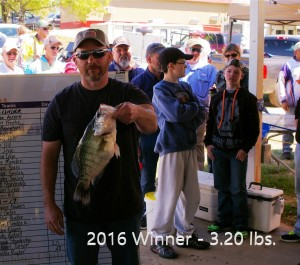 2016 Big fish2e
